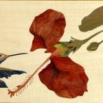 Le Colibri 46 x 28 cm